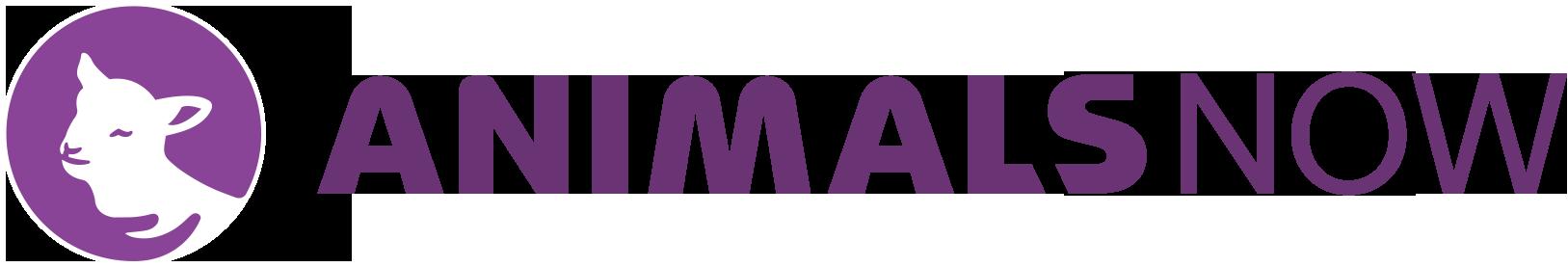 animals-now-logo-full